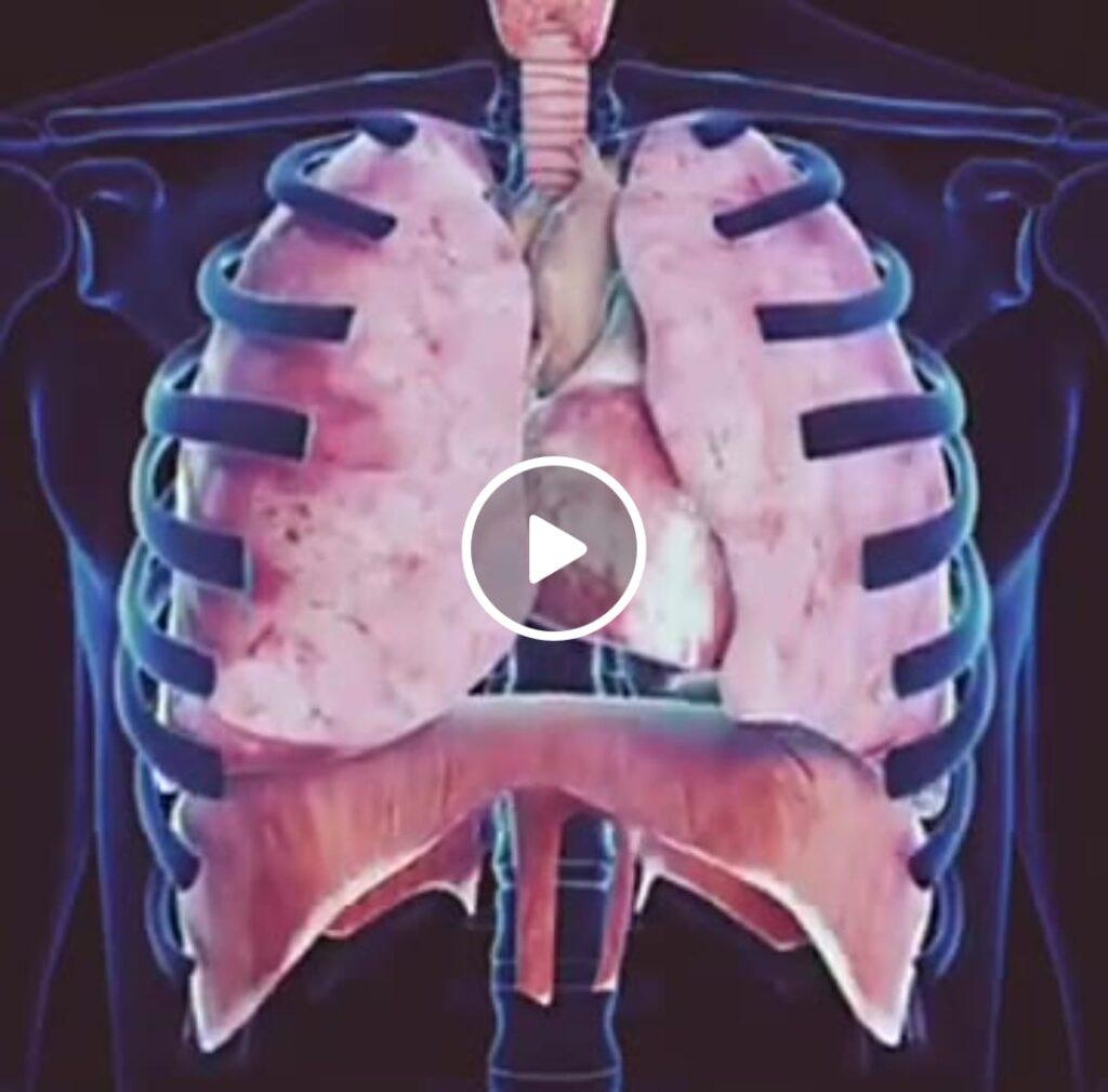 Werken met het middenrif en de ademhaling